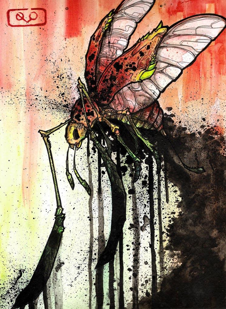 Smog Beetle